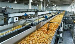 Food Processing Industry Output on Rise