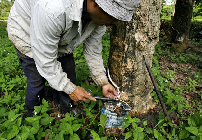 natural rubber, Rubber INdustry
