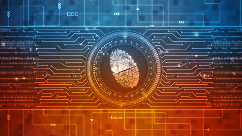 Digital Forensics Sector, Variant Market Research, Digital security