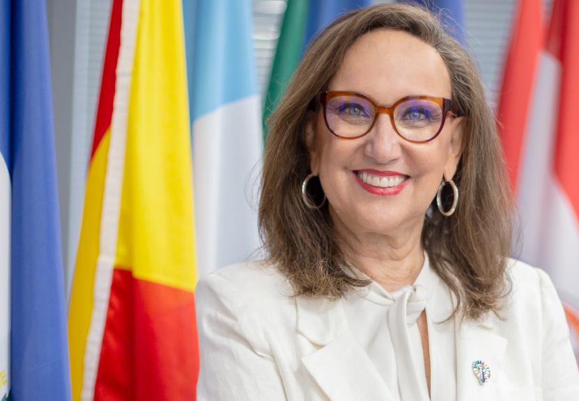 Rebeca Grynspan, UNCTAD